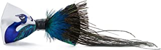 peacock feather bow