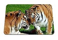 22cmx18cm マウスパッド (トラは大きな猫の捕食者をペアにします) パターンカスタムの マウスパッド