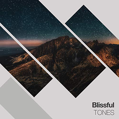 Blissful Tones, Vol. 5