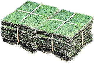 芝生 TM9 高麗芝 改良品種 2平米