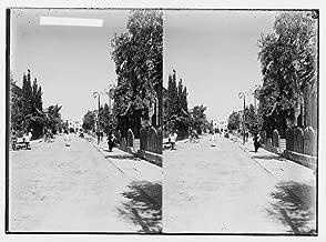HistoricalFindings Photo: Jewish Colonies,settlements,Tel Aviv,Israel,Middle East,Herzl Avenue,c1925