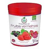 Prep. De Frutas Verm Balde 1,1 Kg Easyfruit