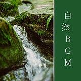 芳しい木々の香り(癒しBGM)