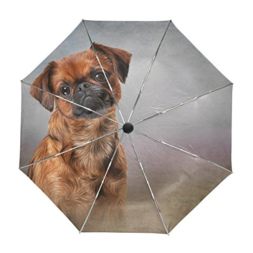 MyDaily Griffon Brabanson Hundeschirm, automatischer Öffnung, UV-Schutz, winddicht