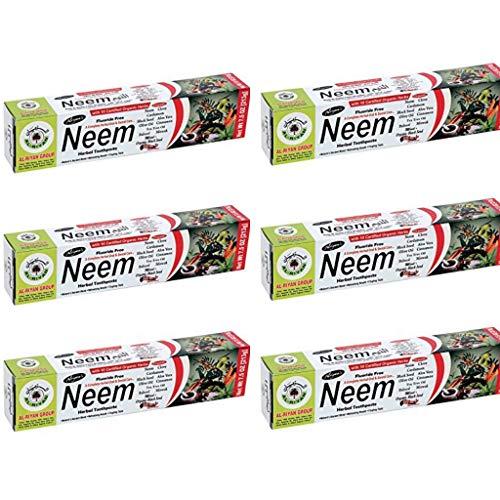 Pack of 6 - Organic Neem 10 in 1 Fluoride Free Toothpaste - Neem, Clove, Black Seed, Cardamon, Aloe Vera, Tea Tree Oil, Miswak, Clove - Herbal Blend - 7.05 oz