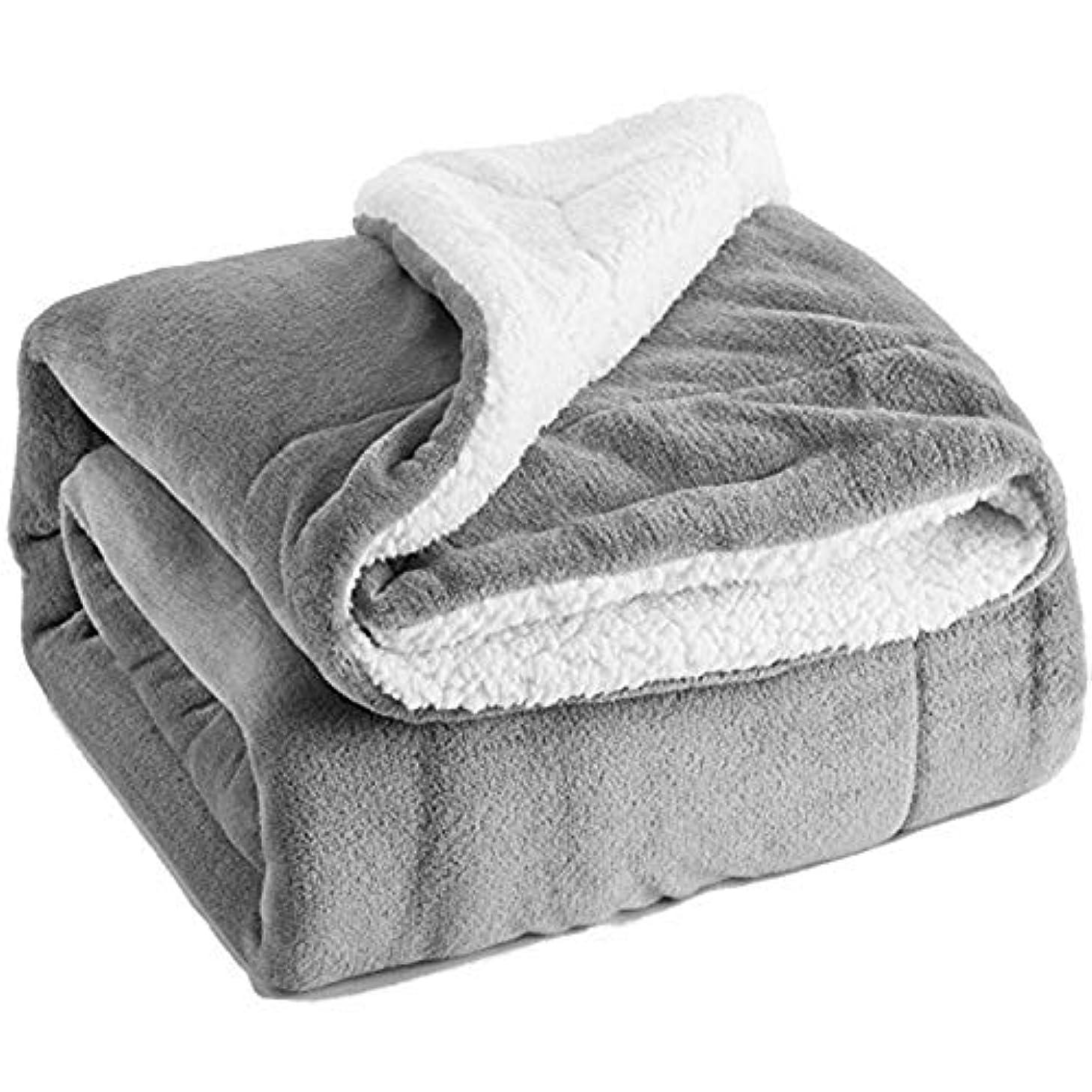 負荷エコー先例(HAMUS) 毛布 ブランケット フランネル毛布 二枚合わせ毛布 吸湿発熱 マイクロファイバー 最高の肌触り ふわふわ超柔軟 ベッドバッド 敷バッド 暖かい 厚手 ふんわり 柔らかい 柔軟(グレー)