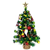 24 Inch Small Christmas Tree with Lights, Artificial Tabletop Mini Xmas Tree, Perfect for...