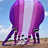NPIL Toys Kite, Kids Kite Fun Kites for Kids Easy to Fly with Outdoor Sports 3D 15m 23m 30m Large Octopus Kite Durable (Color : 15m)