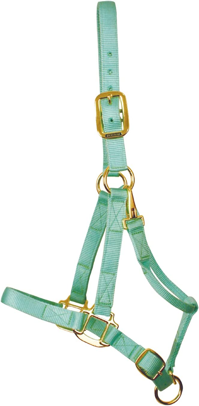 SHEDROW Credence Horse Halter shopping Double Nylon Adjustable Stra w Chin Crown