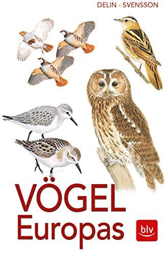 Vögel Europas: Alle Arten, 1800 Farbzeichnungen, 460 Verbreitungskarten