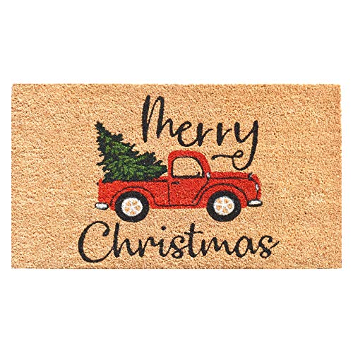 "Calloway Mills AZ106331729 Christmas Fun Doormat, 17"" x 29"", Multicolor"