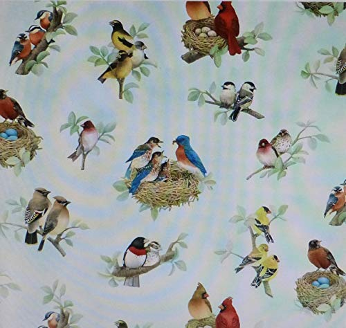 Beautiful Birds Birds All Over Azure Fabric By The Yard