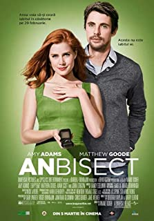 Leap Year Movie Poster (27 x 40 Inches - 69cm x 102cm) (2010) Romanian -(Amy Adams)(Kaitlin Olson)(Matthew Goode)(Adam Scott)(Peter O'Meara)