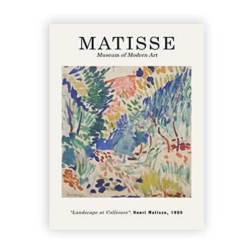 Resumen Henry Matisse dibujo de línea arte minimalista lienzo pintura cartel retro hogar pintura decorativa sin marco C 30x40cm