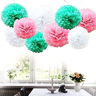 iShyan 18pcs MixTissue Hanging Paper Pom-poms, Flower Ball Wedding Party Outdoor Decoration Premium Tissue Paper Pom Pom Flowers Craft Kit (Pink Mint)