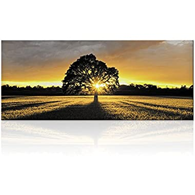 Large Black and White Tree in Sunset Photography Canvas Prints Home Wall Decor Nature Scenery Wall Art (Sunshine Tree)
