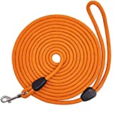 MayPaw Long Rope Dog Lead for Training 15FT / 30FT/ 50FT, Durable Nylon Long Line Lead for Small Medium Dogs Tracking Playing Camping Recall Training (15M/8mm, orange)