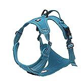 TRUE LOVE Adjustable No-Pull Dog Harness Reflective Pup Vest Harnesses Comfortable Control Brilliant Colors Truelove TLH5651(Blue,M)