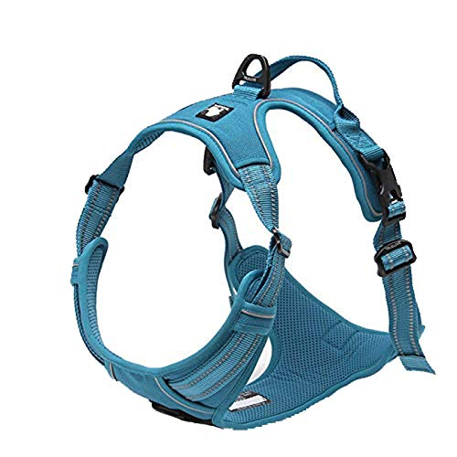 Adjustable No-Pull Dog Harness Reflective Pup Vest Harnesses Comfortable Control Brilliant Colors Truelove TLH5651(Blue,L)