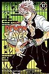 Demon Slayer: Kimetsu no Yaiba, Vol. 17 (17)