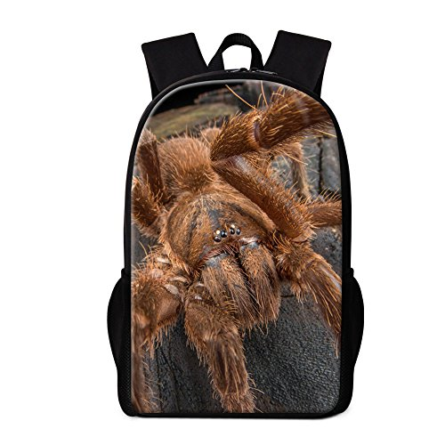 Dispalang Cute Insect Printing School Backpack Spider Bookbag for Children
