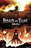 Attack on Titan Fire Wall Poster #1 - Matte Poster Frameless Gift 11 x 17 inch(28cm x 43cm)*IT-00047