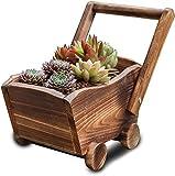 Per interni in vaso a forma di carriola per piante da giardino, legname, per interni ed esterni,Wood