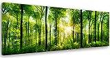 Feeby Frames, Cuadro en lienzo, Cuadro impresión, Cuadro decoración, Canvas de una pieza, 60x150 cm, BOSQUE, ÁRBOL, SOL, NATURALEZA, VERDE