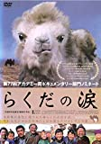 らくだの涙 [DVD] image
