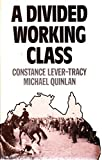 Divided Working Class