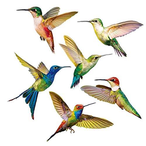 KHHGTYFYTFTY Colibrí Etiqueta de Vidrio Decal anticolisión Ventana Cling para prevenir aviar golpea en Adhesivo 6PCS no