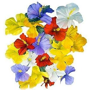 Hawaiian Set Artificial Silk Hibiscus Flowers Hawaiian Luau Tropical Decorations ~ ifa (5 (120 Flowers))