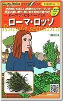 ルッコラ 種子 ローマロッソ ルーコラセルバーティカ 500粒 ルッコラ