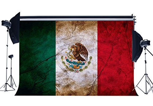 Wofawofa Vinyl 7X5FT Mexican Flag Backdrop Mexico Backdrops Shabby Eagle Photography Background for Person Wishing Independence and Hope Peace Religion National Unity Photo Studio Props KX569