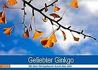 Geliebter Ginkgo (Wandkalender 2022 DIN A2 quer): Zwoelf Aufnahmen vom Ginkgobaum (Monatskalender, 14 Seiten )