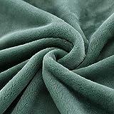 XUMINGLSJ Mantas para Sofás de Franela- Manta para Cama Reversible de 100% Microfibre Extra Suave -Verde_El 120 × 80cm