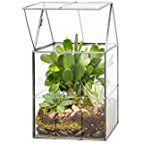 Deco Glass Geometric DIY Terrarium for Succulent & Air Plant- Hinged Roof Shaped for Indoor Gardening Decor- Create Your own Flower, Fern, Moss Centerpiece- Amazing Holiday and Wedding Gift