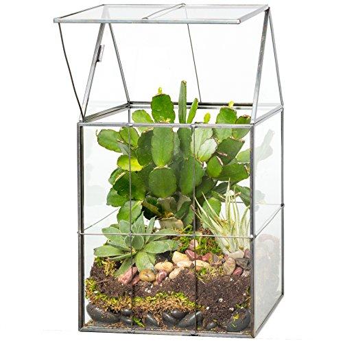 Deco Glass Geometric DIY Terrarium for Succulent & Air Plant- Hinged...