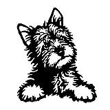 EROSPA® Aufkleber/Sticker KFZ Auto Motorrad - Niedlicher Hund Hündchen Dog - Car-Sticker (Schwarz)