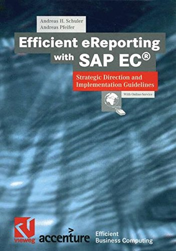 Efficient eReporting with SAP EC®: Strategic Direction and Implementation Guidelines (XEfficient Business Computing)