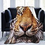 Hoswee - Manta de forro polar ultra suave para sofá o silla de viaje, manta de piel de tigre de animales, manta cálida, manta de cama ultra suave y gruesa para toda la temporada de 80 x 160 pulgadas