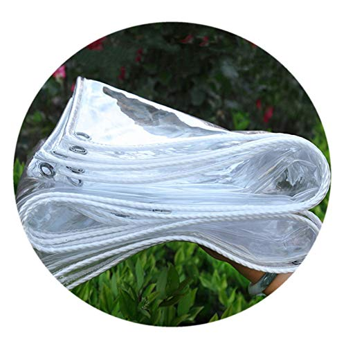 LH-RUG Tarp Waterproof Heavy Duty, PVC Garden Tarpaulin Rainproof Cover, 0.35mm 400G/m2 Patio Clear Awning, Camping Fishing Balcony (Color : Clear, Size : 2x4m)