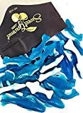 SweetGourmet Gummy Family Shark   Large and Small Gummy Sharks   Blue Raspberry Candy   2 Pounds