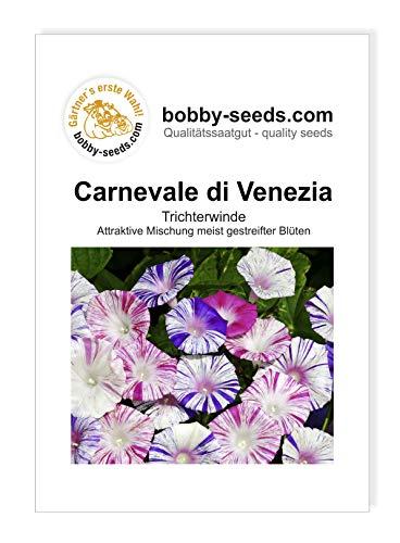 Bobby-Seeds Kletterpflanzen Samen Prunkwinde Carnevale di Venezia Portion