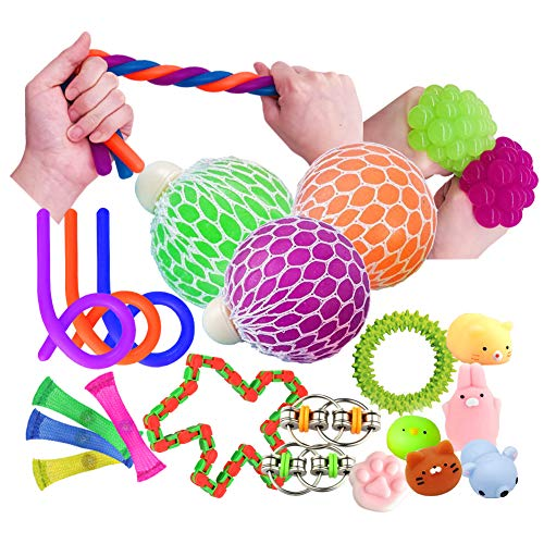 Sensory Toys 20Pcs Fidget Toys Autism Sensory Toys Fiddle Toys Include Squeeze Mesh Balls, Flippy Chain, Mesh Elastic Ball, Stretchy String, Snake Cube, Sensory Ring, Squishy Animal Great Party Favors