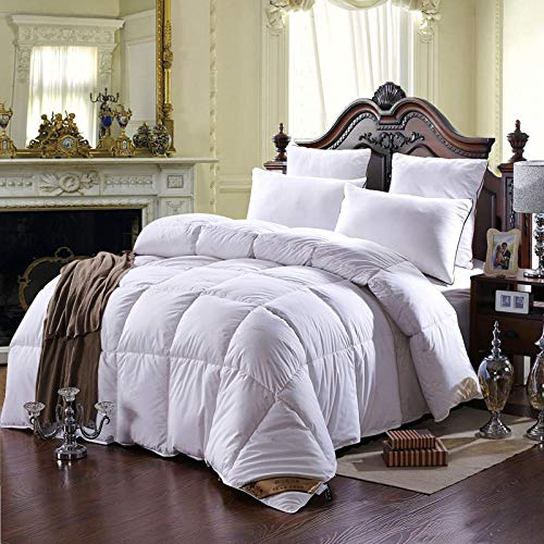 winter Down quilted Blankets/Comforter king queen size Quilt-white_220X240CM/4KG
