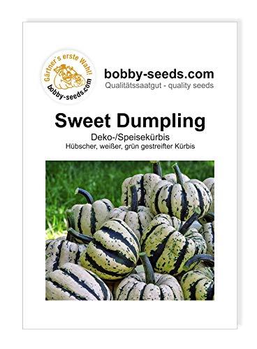 Sweet Dumpling Kürbissamen von Bobby-Seeds, Portion