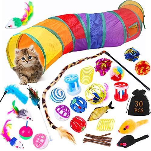 Juguetes para Gatos,30 Piezas Juguetes para Paquete de Variedad para Gatitos,Juguetes Gatos Tunel,Juguetes para Gatos Plumas,Set de Juguetes para Gatos,Ratóns y Bolas Varias para Gatos