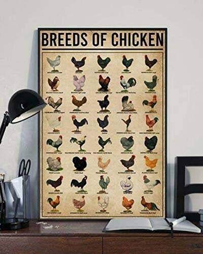 Breeds of Chicken Poster Unframed - Canvas - Motivational Quote Wall Art Home Decor...