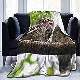 Throw Blanket Grey Owl Couple On Branch Ultra-Soft Micro Fleece Blanketow Manta de Cama súper Suave y acogedora para Cama Sofá Sofá Sala de Estar Playa Picnic Otoño Primavera Invierno Useow B